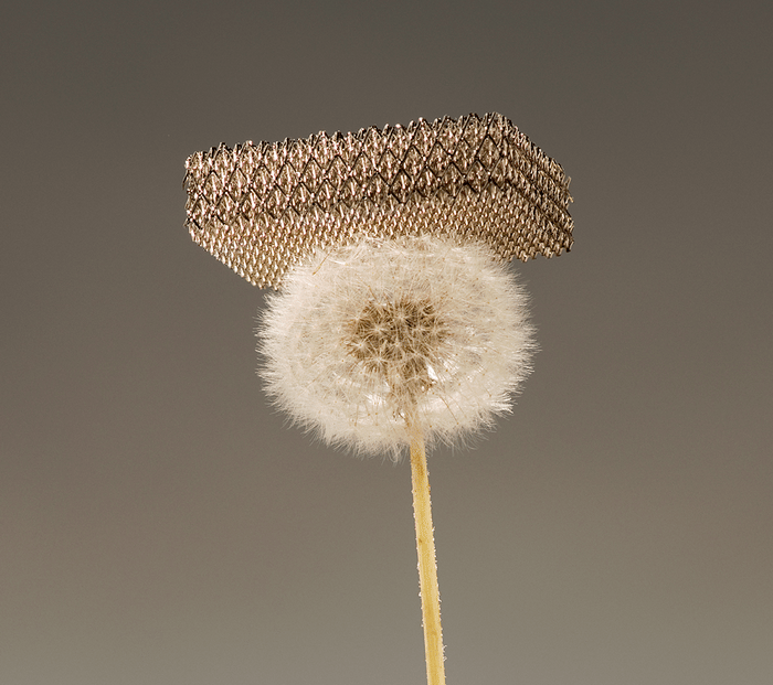 Meet the world's lightest metal structure!
