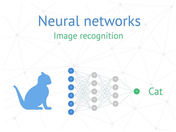 Neural networks learn the same way as we do. When we see enough cats, we instantly recognise the species whether they are big, small, black or brindled.