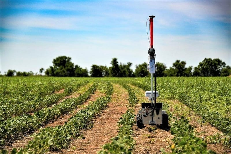 While weeding might seem like a relatively easy task, it actually requires a lot of machine intelligence to pick out weeds among crops.